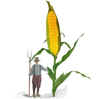 boostanje pridelkov