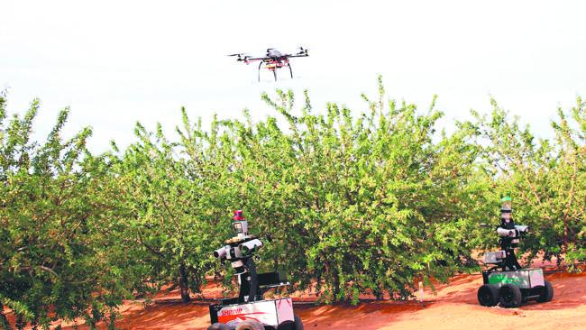 dron in robota