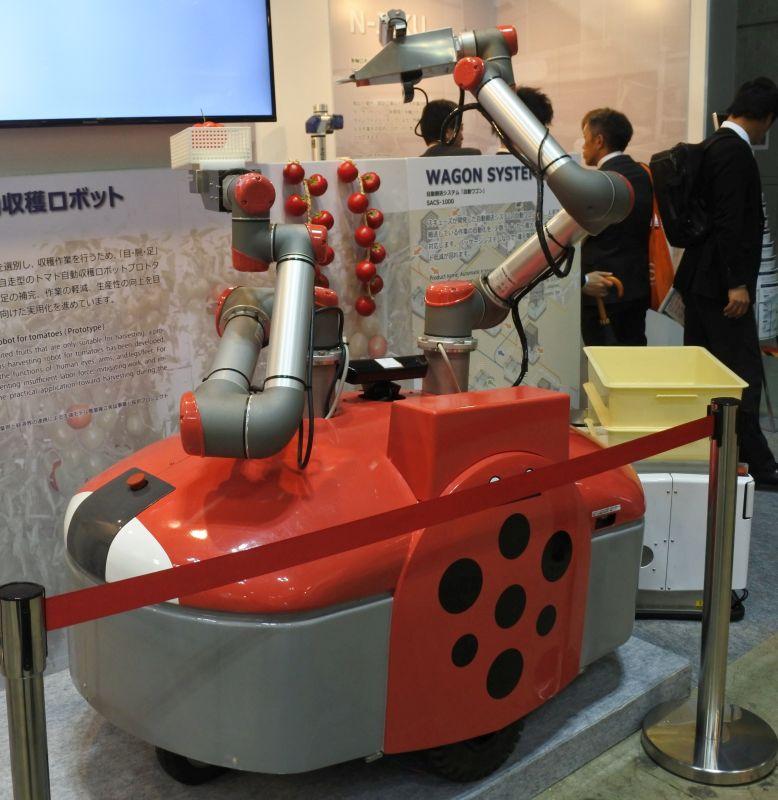tomato robot