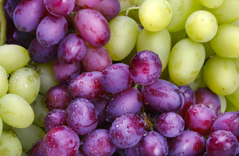 red-and-white-grapes