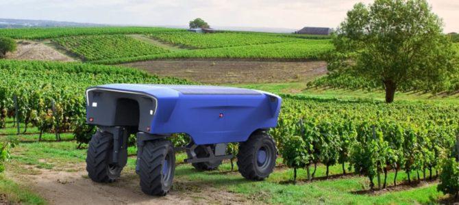 Vinogradniški robot