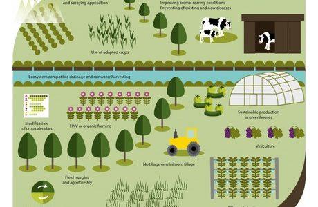 Podnebne spremembe že ogrožajo prihodnost kmetovanja v Evropi