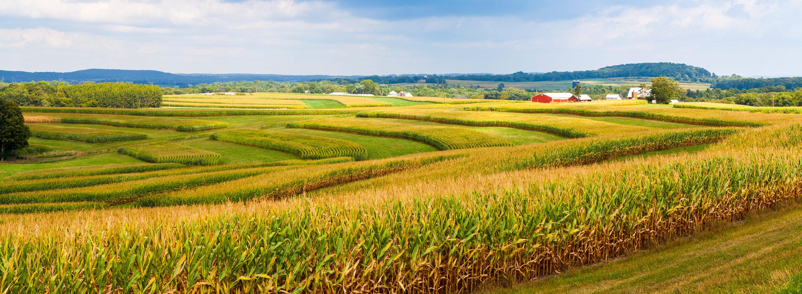 Regenerativno kmetijstvo